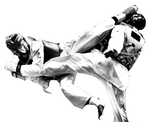 taekwondo illustration